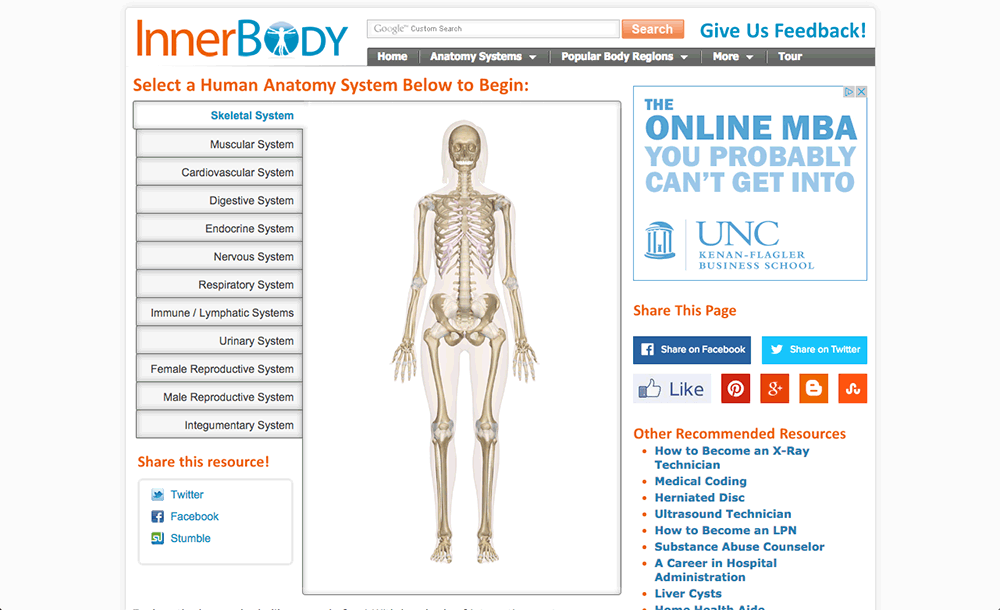 innerbody reviews | edshelf, Cephalic Vein