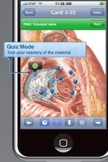 Netter S Anatomy Flash Cards 3rd Edition Reviews Edshelf