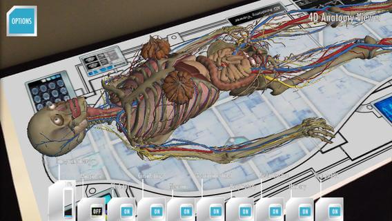 Anatomy 4d app