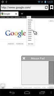 Puffin Web Browser Reviews   edshelf